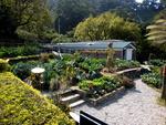 Organic vegetable garden, Kadoorie Farm, New Territories, Hong Kong